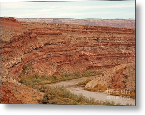 Autumn Metal Print featuring the photograph San Juan River by Fred Stearns