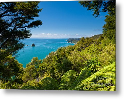Cook Strait Metal Print featuring the photograph Subtropical Forest Of Abel Tasman Np In New Zealand by Stephan Pietzko
