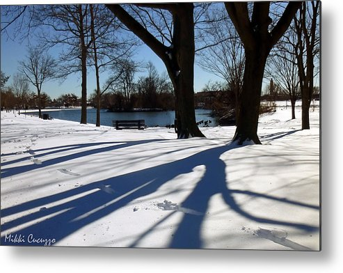 Seasonal Metal Print featuring the photograph Sunshine And Shadows by Mikki Cucuzzo