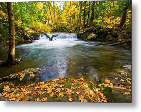 A. Circinatum Metal Print featuring the photograph Waterfall On Whatcom Creek by Michael Russell