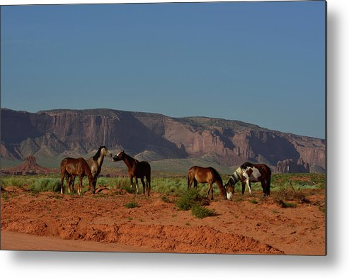 Color Image Metal Print featuring the photograph Wild Horses In Monument Valley by Raul Touzon