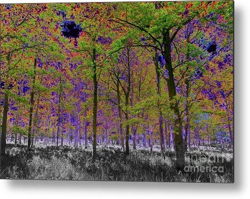 Tree Metal Print featuring the digital art Forest Art by David Pyatt