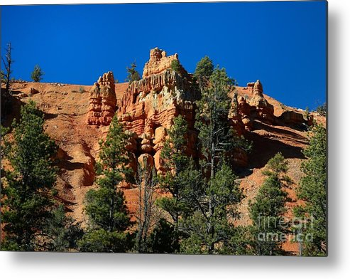 Red Canyon Metal Print featuring the photograph Red Canyon by Marc Bittan