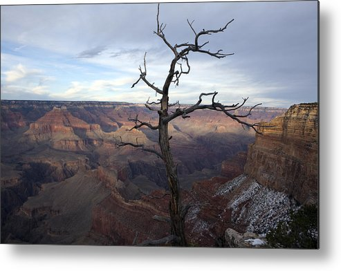 Arizona Metal Print featuring the photograph Grand Canyon by Karen Cowled