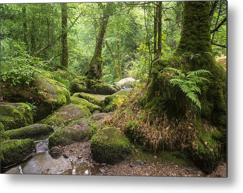 Landscape Metal Print featuring the photograph Landscape Of Becky Falls Waterfall In Dartmoor National Park Eng by Matthew Gibson
