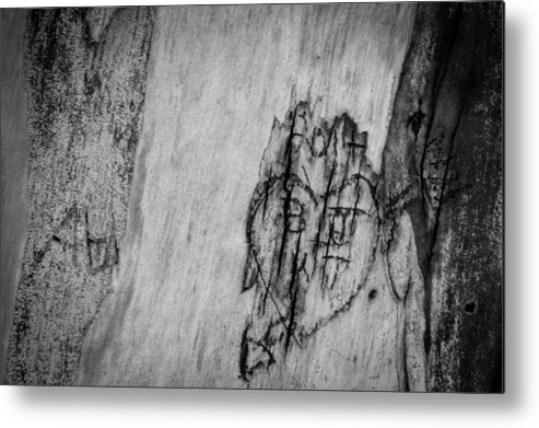 People Carve Names Into A Tree Metal Print featuring the photograph Amore by Marit Runyon
