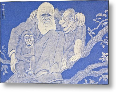 Anniversary Metal Print featuring the photograph 1909 Cartoon Darwin With Apes Detail by Paul D Stewart