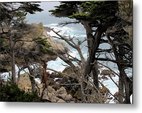Metal Print featuring the photograph Coast Of California by G Berry