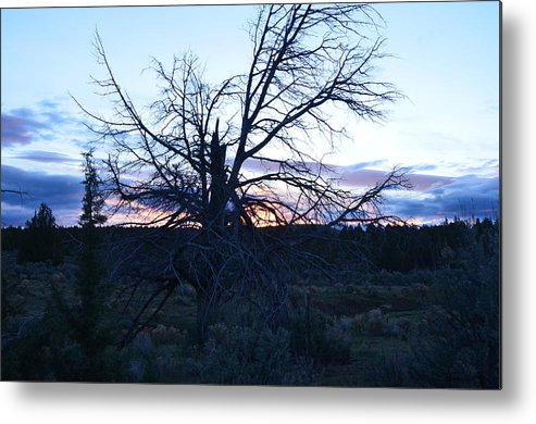 Sunrise Metal Print featuring the photograph Good Morning by Linda Larson