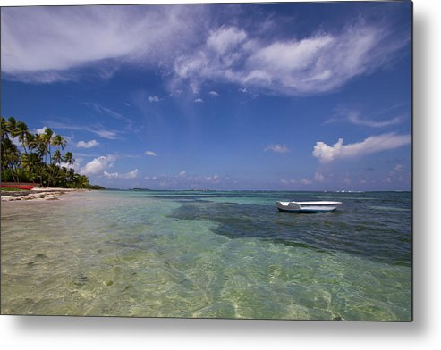 Color Metal Print featuring the photograph Perfect Paradise Beach With Palm Trees by Katia Singletary - Vwpics