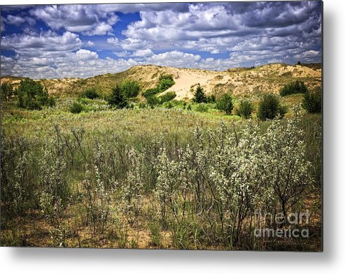 Sand Metal Print featuring the photograph Sand Dunes In Manitoba by Elena Elisseeva