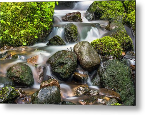 Waterfall Metal Print featuring the photograph Waterfall Mount Rainier National Park by Bob Noble