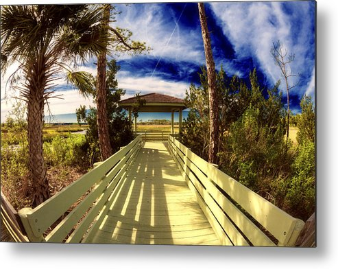 Florida Metal Print featuring the photograph Nature Preserve by Raul Rodriguez