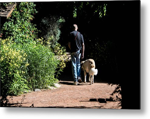 Dog Lovers Metal Print featuring the photograph Lets Go by Marit Runyon