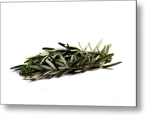 Aroma Metal Print featuring the photograph Rosemary by Henrik Lehnerer