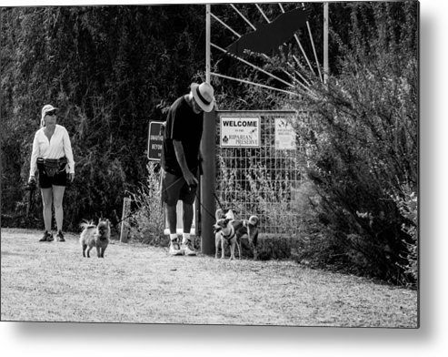 Couple Metal Print featuring the photograph Lets Go by Marit Runyon