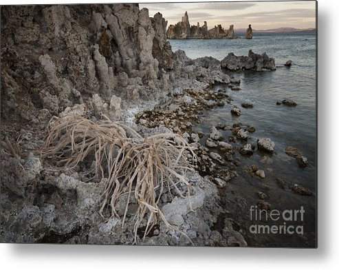 America Metal Print featuring the photograph Tufa Formations, Mono Lake, Ca by John Shaw
