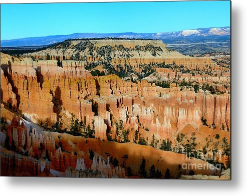 Bryce Canyon Metal Print featuring the photograph Bryce Canyon by Marc Bittan