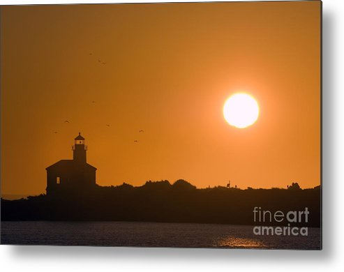 Nature Metal Print featuring the photograph Lighthouse by John Shaw
