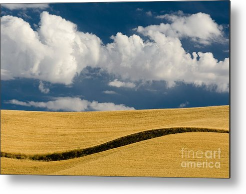 Cloud Metal Print featuring the photograph Farm Field by John Shaw