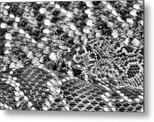 A Dangerous Abstract Metal Print featuring the photograph A Dangerous Abstract by JC Findley