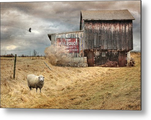 Mail Pouch Metal Print featuring the photograph A Sign Of The Times by Lori Deiter