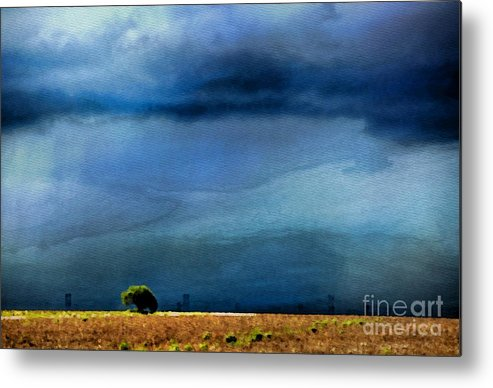Storm Metal Print featuring the photograph A Summer Rain Wc by Ken Williams