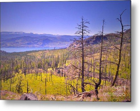 Mountain Metal Print featuring the photograph A View From Okanagan Mountain by Tara Turner