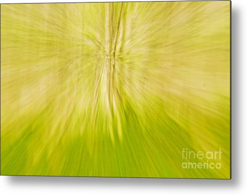 Abstract Metal Print featuring the photograph Abstract Nature by Gry Thunes