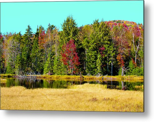 Adirondack's Metal Print featuring the photograph Adirondack Color Iv by David Patterson