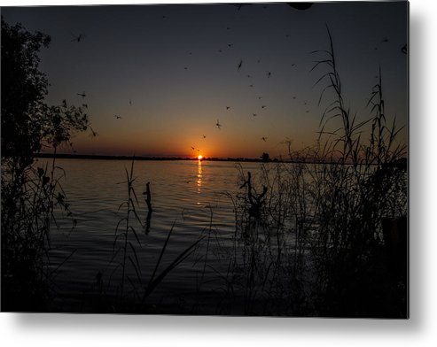 African Metal Print featuring the photograph African Sunset by Suanne Forster