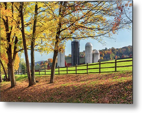 Bucolic Metal Print featuring the photograph Afternoon Delight by Bill Wakeley