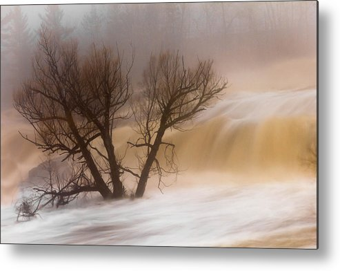 against The Current st. Louis River jay Cooke thomsen Reservoir spring Tree long Exposure spring Melt fog mist nature river mary Amerman Metal Print featuring the photograph Against The Current by Mary Amerman