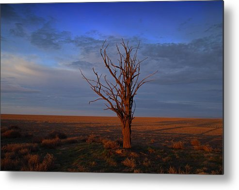 Landscape Metal Print featuring the photograph Alone Yet Not Alone by Lynn Hopwood