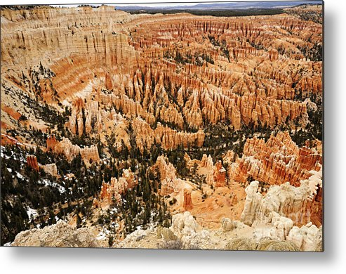 Photography Metal Print featuring the photograph Amphitheatre At Bryce Canyon by Larry Ricker
