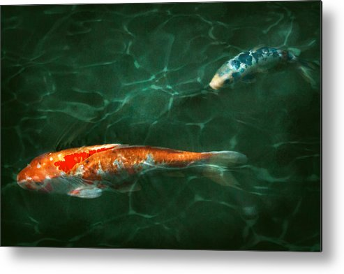 Koi Metal Print featuring the photograph Animal - Fish - Koi - Another Fish Story by Mike Savad