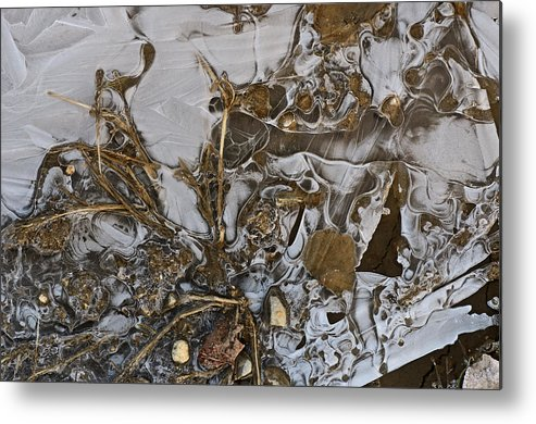 Ice Metal Print featuring the photograph Apparitions On Ice by Susan Capuano