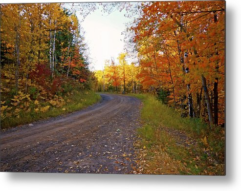 Autumn Metal Print featuring the photograph Autumn Road by Bryan Benson