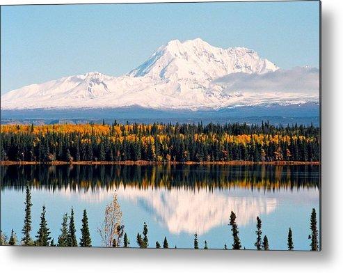 Alaska Metal Print featuring the photograph Autumn View Of Mt. Drum - Alaska by Juergen Weiss