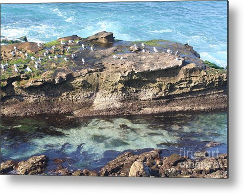 Beach Metal Print featuring the photograph Beach Bliss by Laura Paine