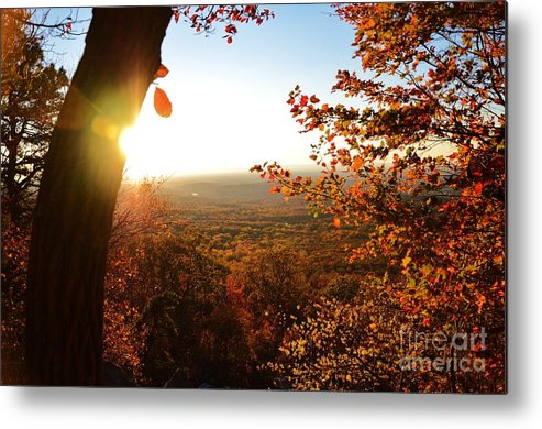 Metal Print featuring the photograph Bear's Den 3 by TSC Photography Timothy Cuffe Jr