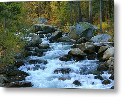 Landscapes Metal Print featuring the photograph Bishop Creek by Douglas Miller
