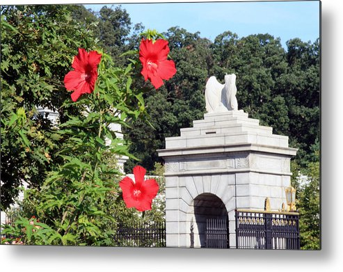 Arlington National Cemetery Metal Print featuring the photograph Blooms In Arlington by Cora Wandel