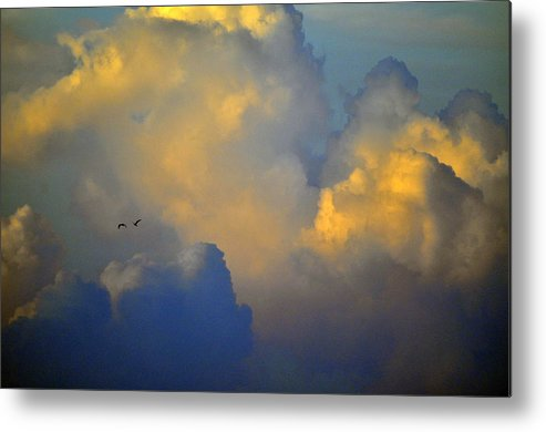 Color Metal Print featuring the photograph Blue And Yellow Clouds At Sunset With Birds Usa by Sally Rockefeller