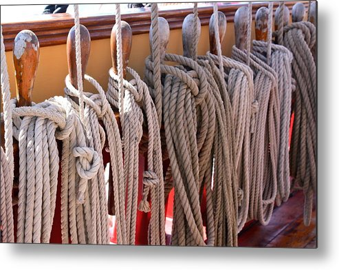 The Bounty Metal Print featuring the photograph Bounty Lines by Valerie Tull