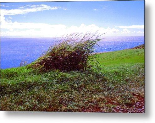 Ocean Metal Print featuring the photograph Breezy Hill by Dena Baker