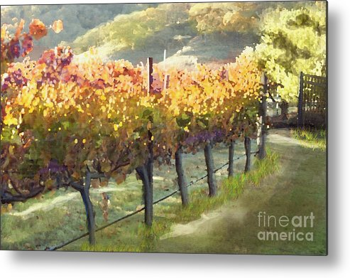 Corde Valle San Martin Ca Metal Print featuring the painting California Vineyard Series Morning In The Vineyard by Artist and Photographer Laura Wrede