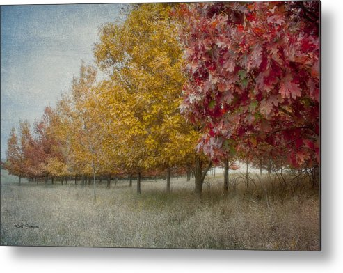 Changing Of The Seasons Metal Print featuring the photograph Changing Of The Seasons by Jeff Swanson