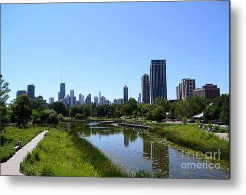 Chicago Metal Print featuring the photograph Chicago Skyline From Lincoln Park Zoo by Aaron Edrington