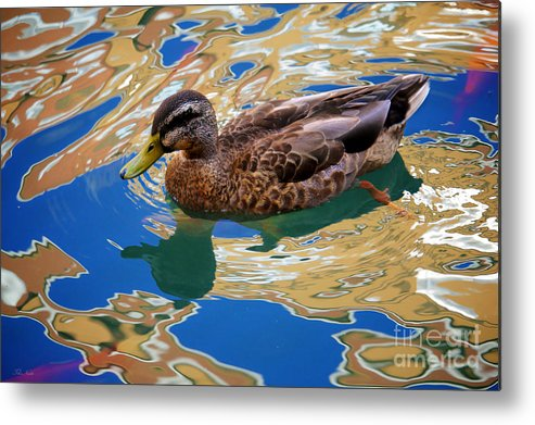 Colorful Metal Print featuring the photograph Colorful Waters by The Noeto